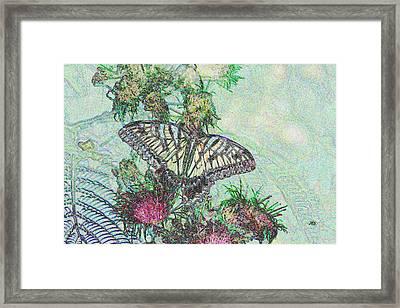 5807 6 Framed Print by Jim Simms
