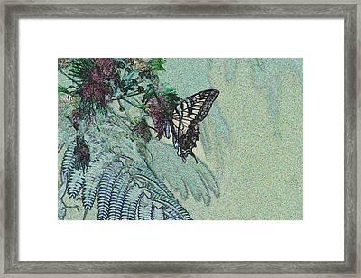 5815 5  Framed Print by Jim Simms