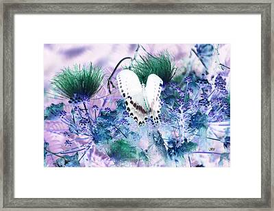 5839 2 Framed Print by Jim Simms