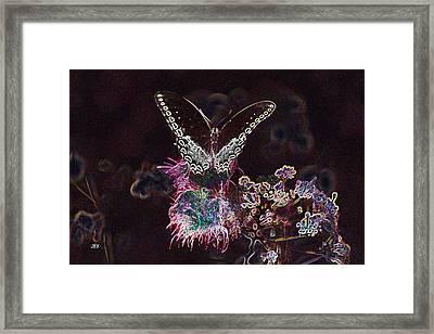 5844 3 Framed Print by Jim Simms