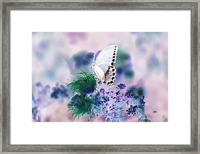5846 2 Framed Print by Jim Simms