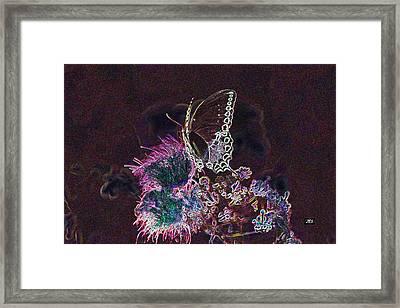 5846 3 Framed Print by Jim Simms