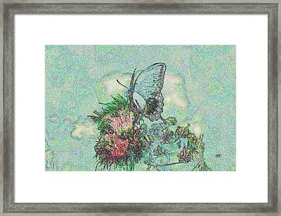 5846 4 Framed Print by Jim Simms