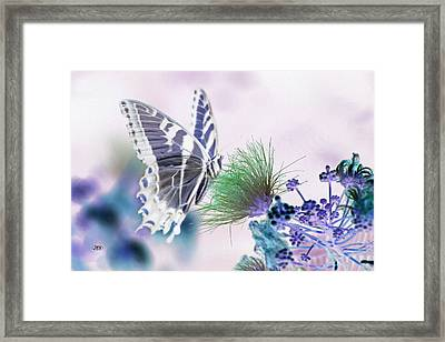 5849 2 Framed Print by Jim Simms