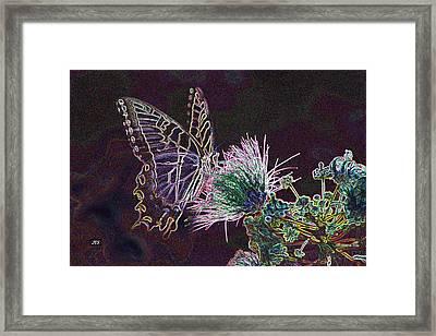 5849 3 Framed Print by Jim Simms