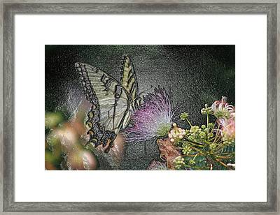 5849 4 Framed Print by Jim Simms