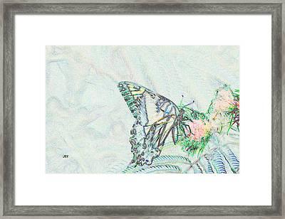 5859 4 Framed Print by Jim Simms