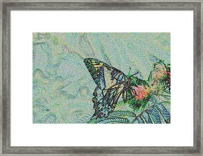 5859 5 Framed Print by Jim Simms