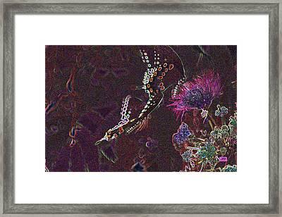 5875 1 Framed Print by Jim Simms