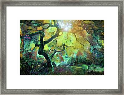 6 Abstract Japanese Maple Tree Framed Print