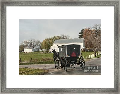 Amish Buggy Framed Print