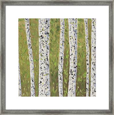 Aspen Trees Colorado Framed Print by Frederic Payet