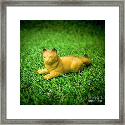 Cat Figurine Framed Print