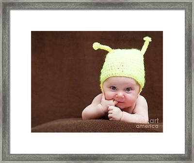 Framed Print featuring the photograph Cute Newborn Portrait by Gualtiero Boffi