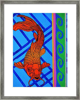 Fish 1 Framed Print by Stephen Humphries