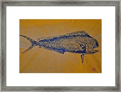 Gyotaku - Mahi Mahi - Dorado - Dolphinfish Framed Print