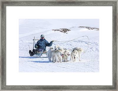 Huskies In Ilulissat, Greenland Framed Print