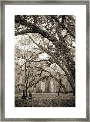 Old Sheldon Church Ruins Framed Print by Dustin K Ryan