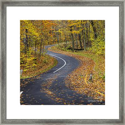 Pierce Stocking Drive In Fall Framed Print by Twenty Two North Photography