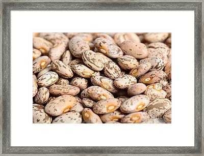 Pinto Beans Framed Print
