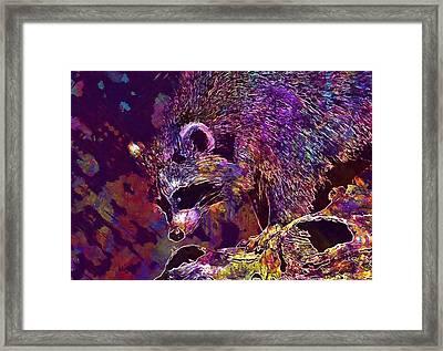 Framed Print featuring the digital art Raccoon Wild Animal Furry Mammal  by PixBreak Art