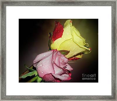 Framed Print featuring the photograph Roses by Elvira Ladocki