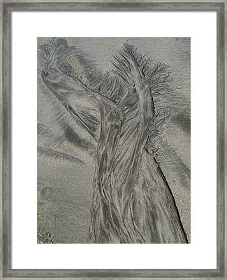 Sand Reels Framed Print