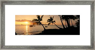 Silhouette Of Palm Trees At Dusk Framed Print
