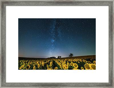 Sunflower Galaxy Framed Print