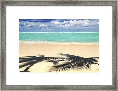 Tropical Beach Framed Print by Elena Elisseeva