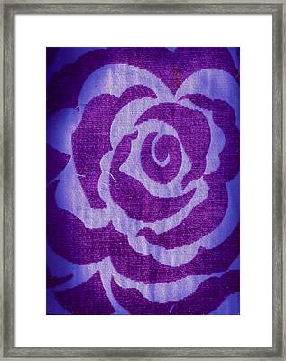 Untitled Framed Print by Anne-Elizabeth Whiteway