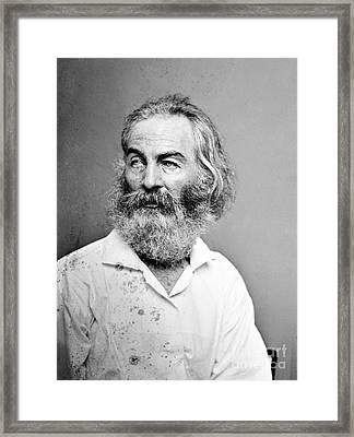 Walt Whitman (1819-1892) Framed Print