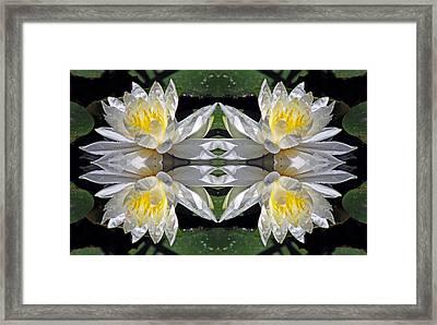 White Lotus Mandala Framed Print by Daniel Unfried