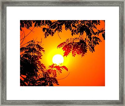 Splendors Of Himalayas Framed Print