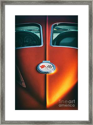63 Stingray Framed Print by Tim Gainey