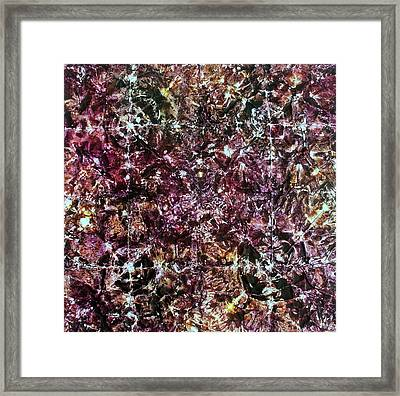 67-offspring While I Was On The Path To Perfection 67 Framed Print