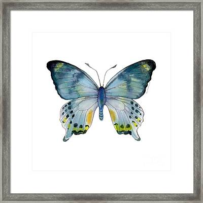 68 Laglaizei Butterfly Framed Print