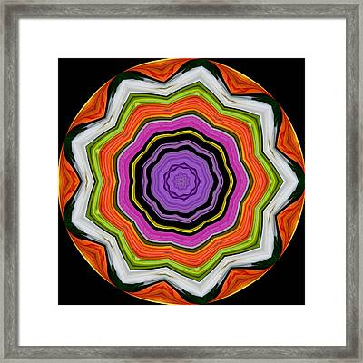 Framed Print featuring the photograph 9 Petaled Designs by Baha'i Writings As Art