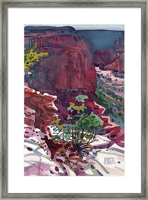 Canyon View Framed Print by Donald Maier