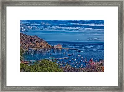 Catalina Island Harbor Framed Print