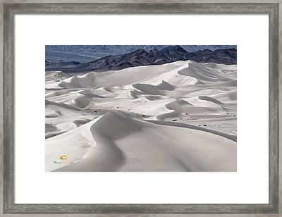 Dumont Dunes 8 Framed Print