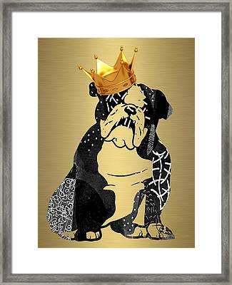 English Bulldog Collection Framed Print