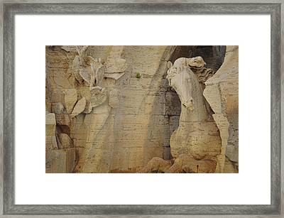 Horse In The Piazza Fountain  Framed Print by JAMART Photography
