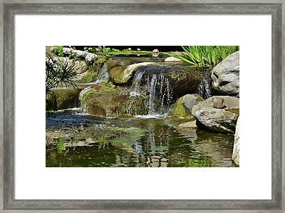 7 Lily Pond Waterfall I Framed Print