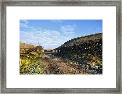 Muker Meadows Framed Print