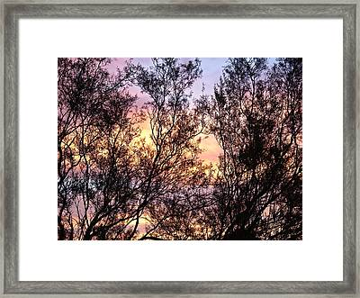 7 Oh One Am Framed Print by Bonnie See