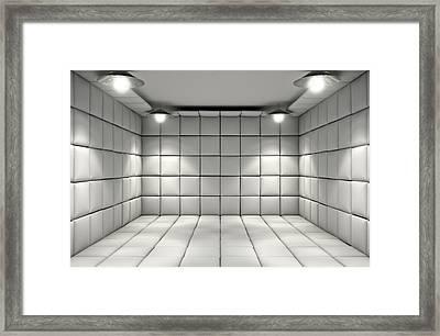 Padded Cell Framed Print by Allan Swart