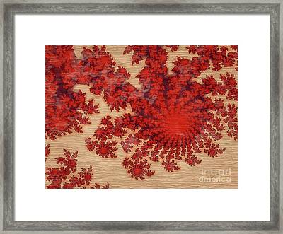 Patterns Of Life By Rt Framed Print