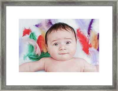 Three Month Old Baby Boy Framed Print