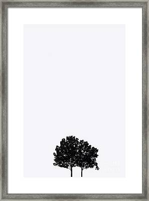 7 Years Framed Print by Amanda Barcon